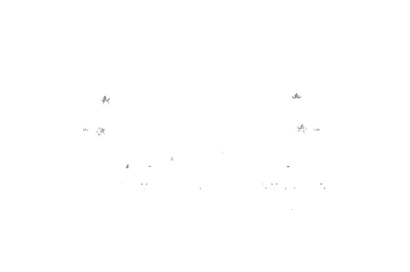 testicon_Alpentourer_Premium